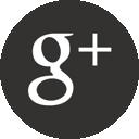 Google Plus - Stefano Guerra